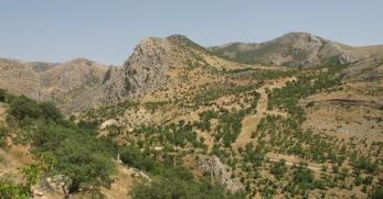 vers Arsameia