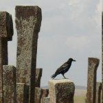 cimetière seljoukide d'Ahlat