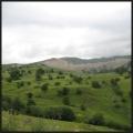 yaylalar entre Ardahan et Ardanuc