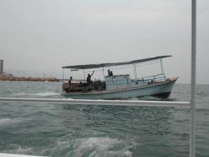 denizden gelen